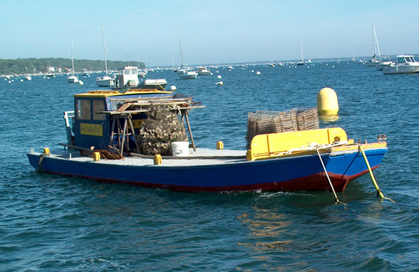 bateau de peche en bois typique du bassin d'arcachon